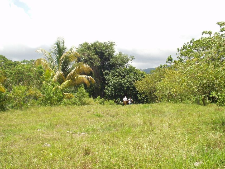 Additional photo for property listing at Costa Rica Lomas De Jaco / Jaco Beach Costa Rica Lomas De Jaco / Jaco Beach  Autres Régions 00000 États-Unis