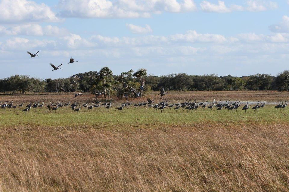 Additional photo for property listing at 43153 Us Highway 441 Highway  Okeechobee, Florida 34972 United States