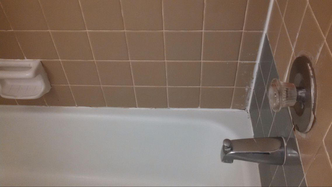 Clean Tub/Shower