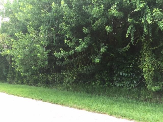 Land for Sale at 5217 Birch Drive 5217 Birch Drive Fort Pierce, Florida 34982 United States