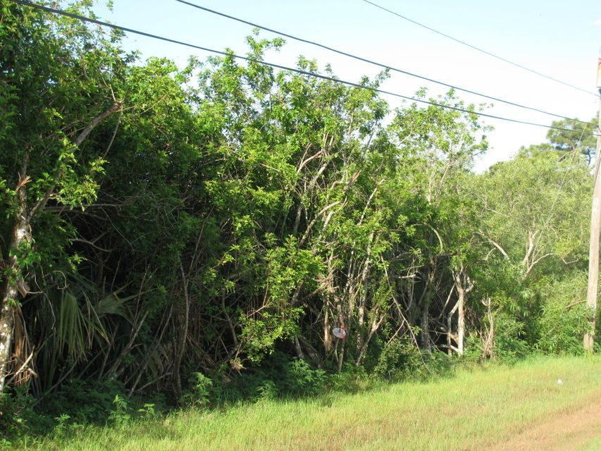 Additional photo for property listing at Xxx 38th Road N Xxx 38th Road N Loxahatchee, Florida 33470 United States