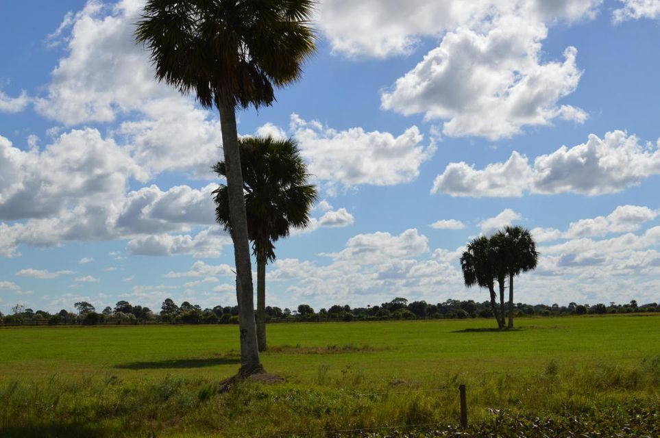 Agricultural Land for Sale at SW Hosanah Lane Okeechobee, Florida 34974 United States