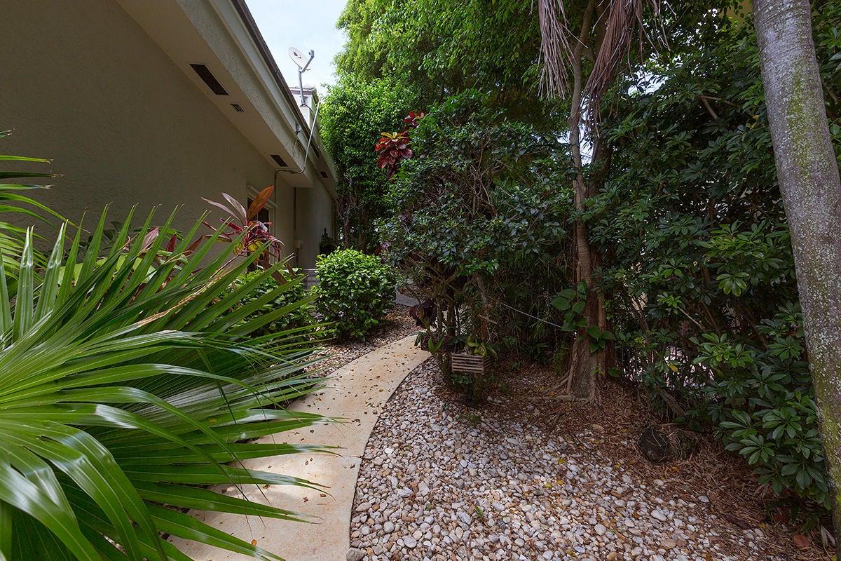43 Walkway Backyard