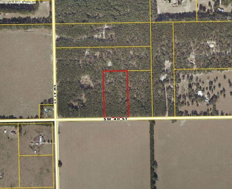 Agricultural Land for Sale at SW 47th Court SW 47th Court Bell, Florida 32619 United States