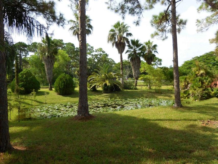 11648 tangerine boulevard west palm beach fl 33412 rx for Koi pond builders in west palm beach