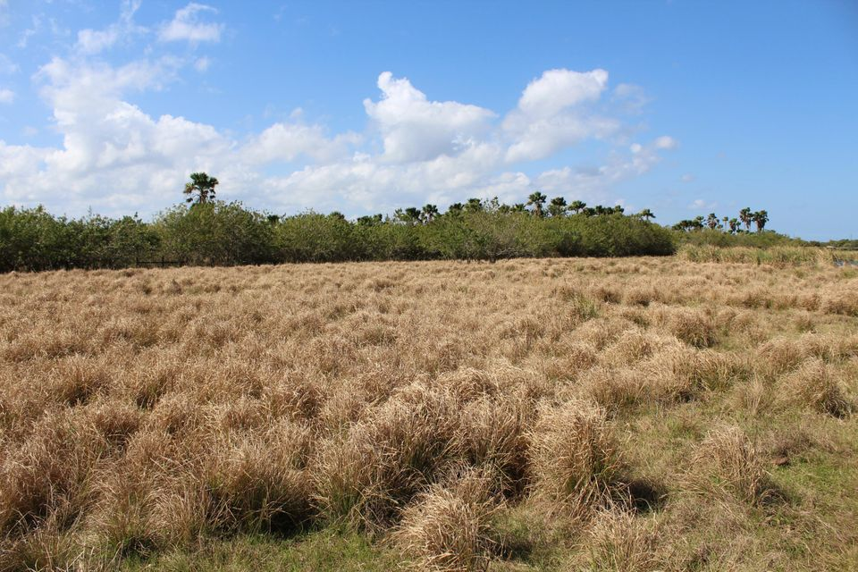 Agricultural Land for Sale at 65th Street 65th Street Vero Beach, Florida 32967 United States