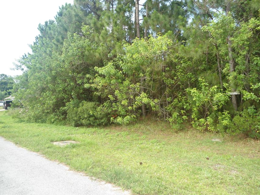 Additional photo for property listing at Rock Drive  Polk City, Florida 33868 Estados Unidos