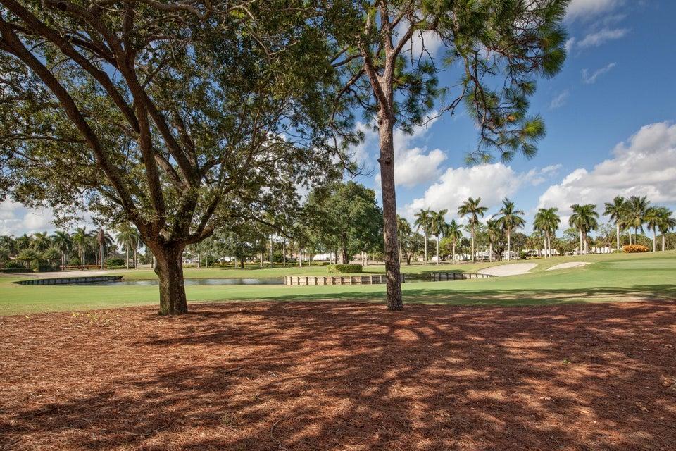 4689 Tree Fern Drive