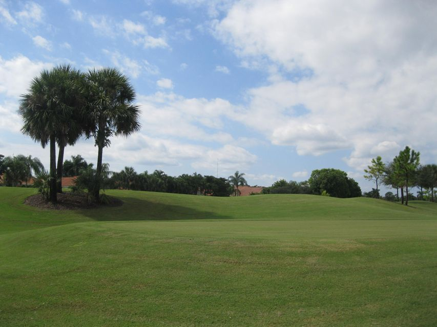 10670 Greenbriar Villa Drive, Wellington, FL 33449
