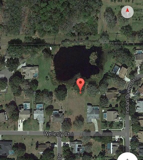 8803 Wellesly Court, Odessa, FL 33556