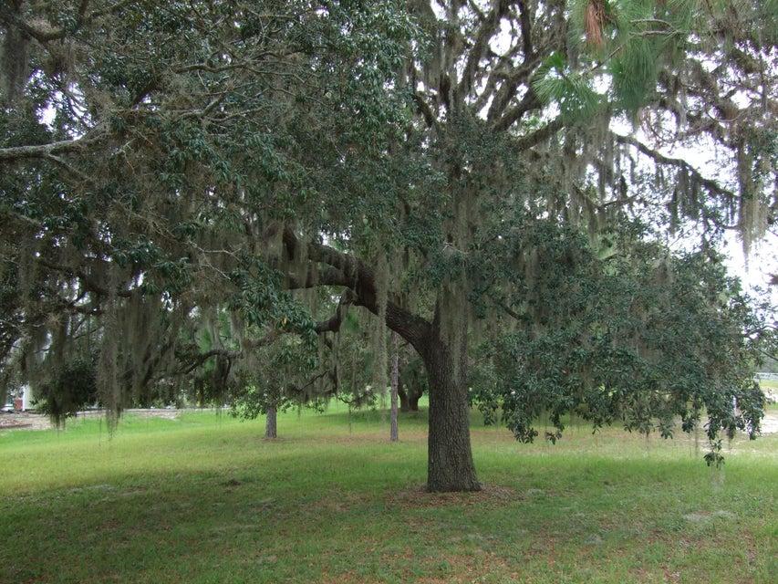 70 N Crystal Meadow Path, Lecanto, FL 34461