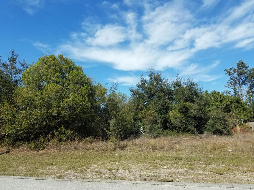 Land for Sale at 773 SW Andrew Road 773 SW Andrew Road Port St. Lucie, Florida 34953 United States