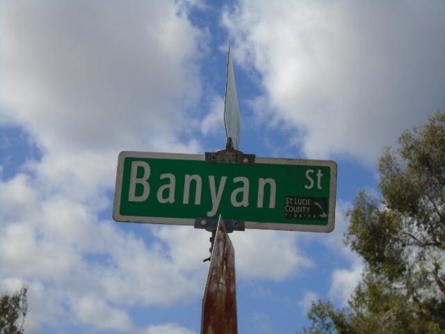 7102 Banyan Street