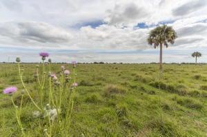 Agricultural Land pour l Vente à SW Hosanah Lane SW Hosanah Lane Okeechobee, Florida 34974 États-Unis