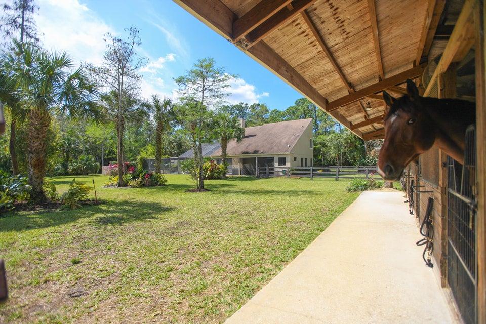 1588 Stallion Drive