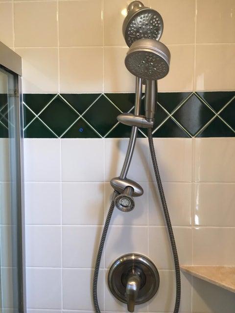 Guest Bath Triple Shower Heads