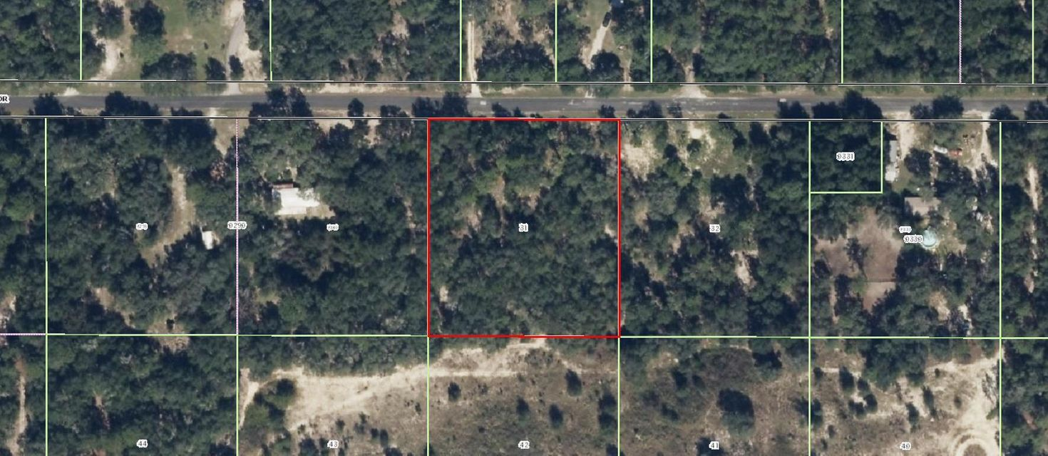 Land for Sale at 1606 E Amberjack Drive Hernando, Florida 34442 United States