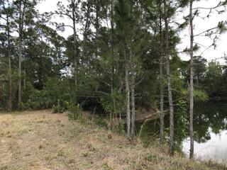 Agricultural Land für Verkauf beim 1470 A Road Loxahatchee Groves, Florida 33470 Vereinigte Staaten