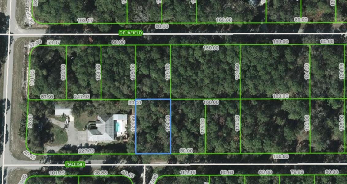 3153 Raleigh Avenue, Lake Placid, FL 33852