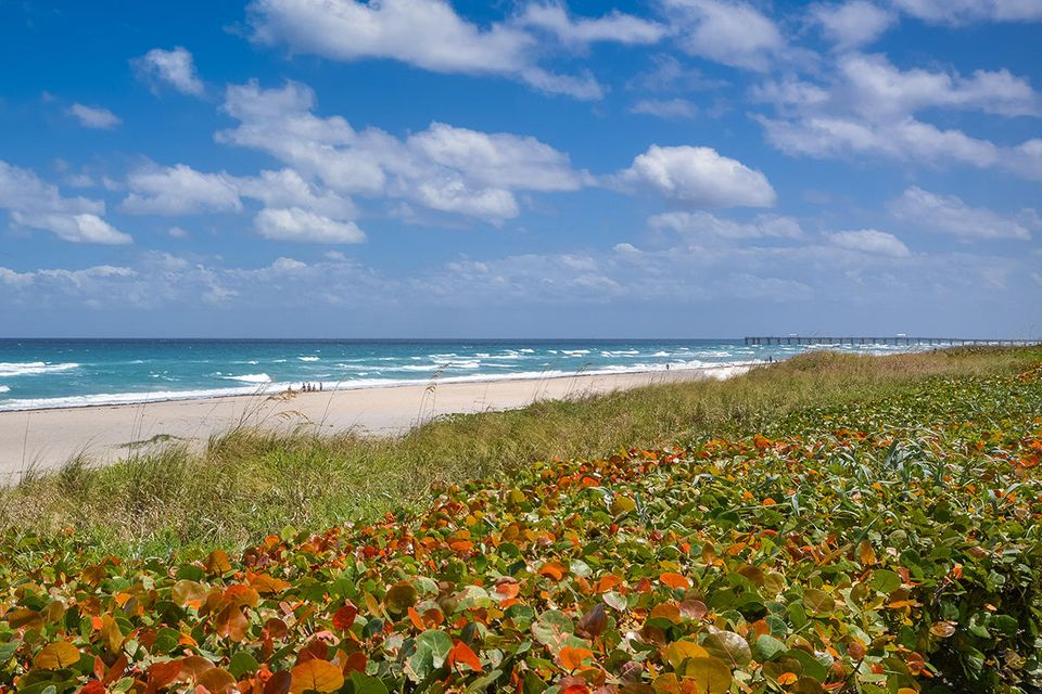 2660 S Ocean Boulevard Palm Beach FL 33480 - photo 11
