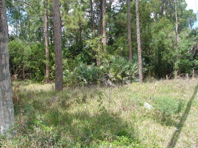 Terrain pour l Vente à 487 Horse Club Avenue Clewiston, Florida 33440 États-Unis
