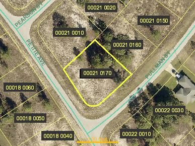 Land for Sale at 315 Pullman Street Lehigh Acres, Florida 33974 United States