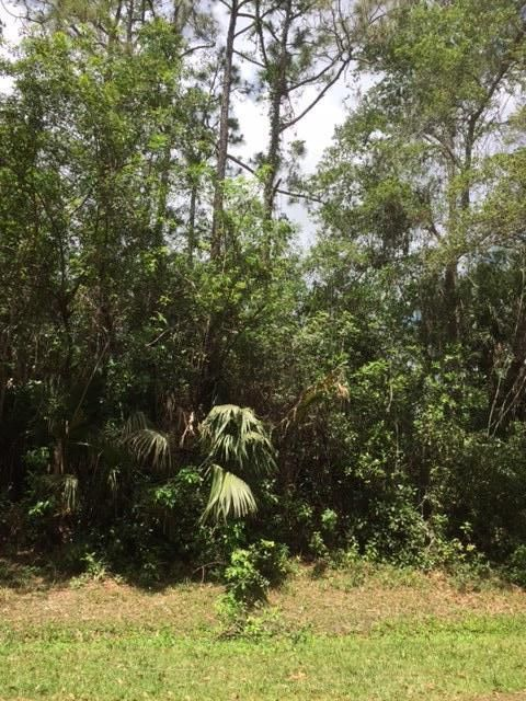 Agricultural Land for Sale at Lot Sandy Run Jupiter, Florida 33478 United States