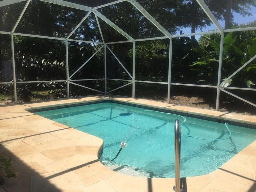 Patio/Pool