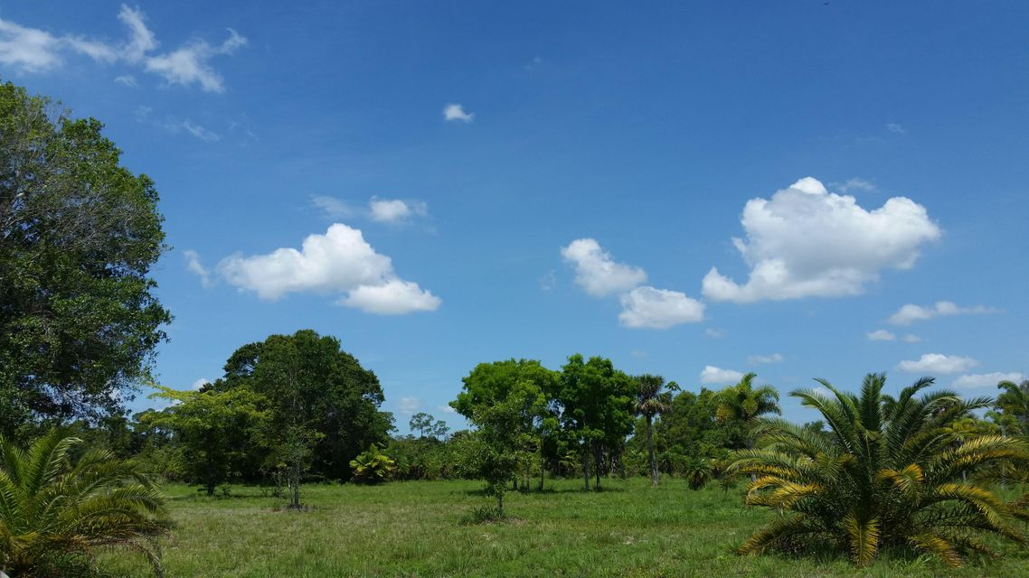 Additional photo for property listing at 3700 D Road 3700 D Road Loxahatchee Groves, Florida 33470 États-Unis