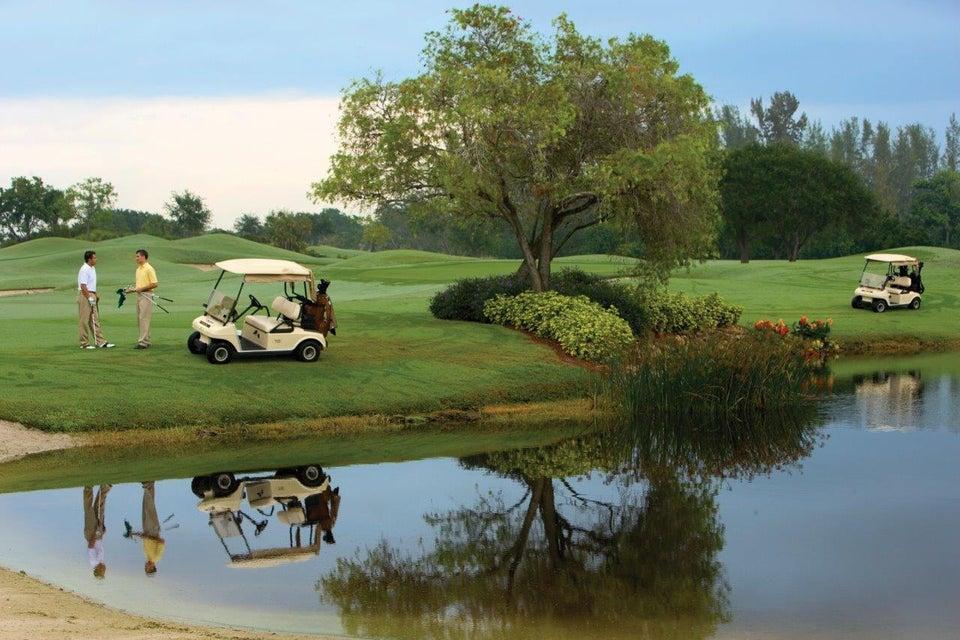 Golf Reflection3544