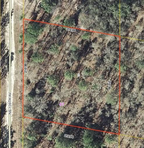 Land for Sale at Xxx 139 Avenue NE Bronson, Florida 32621 United States