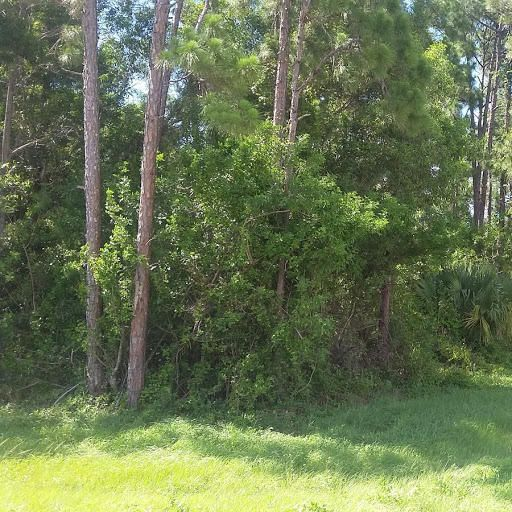 Additional photo for property listing at W Lancashire Drive W Lancashire Drive Loxahatchee, Florida 33470 United States