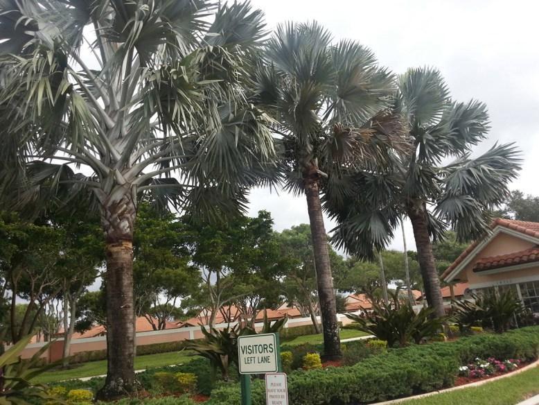 6093 Pointe Regal Circle 107, Delray Beach, FL 33484