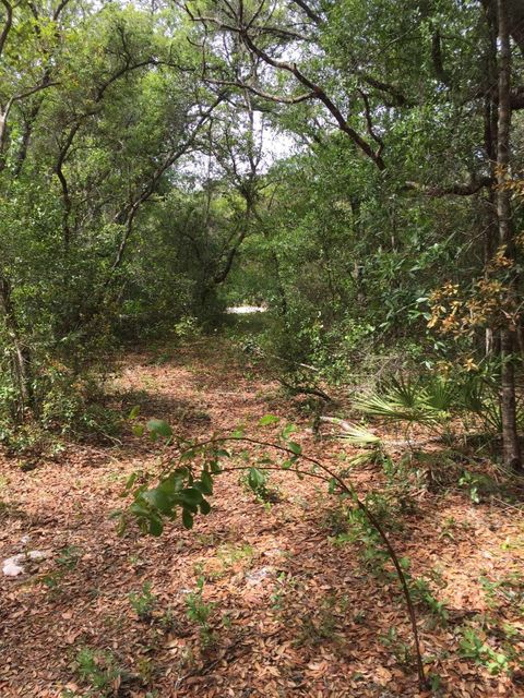 Land for Sale at 4147 E Camp Izzard Place 4147 E Camp Izzard Place Citrus Springs, Florida 34434 United States