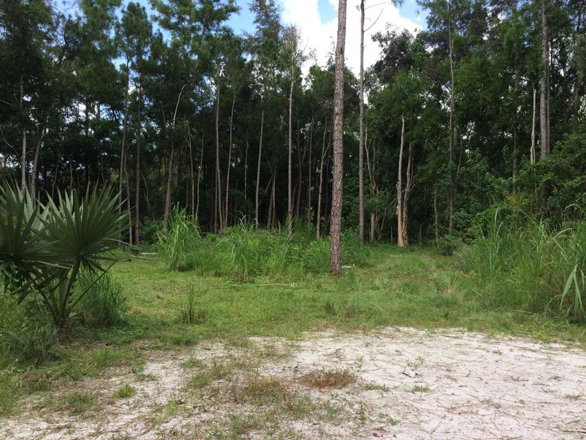 Additional photo for property listing at 12687 54th St. N N  West Palm Beach, Florida 33411 Estados Unidos