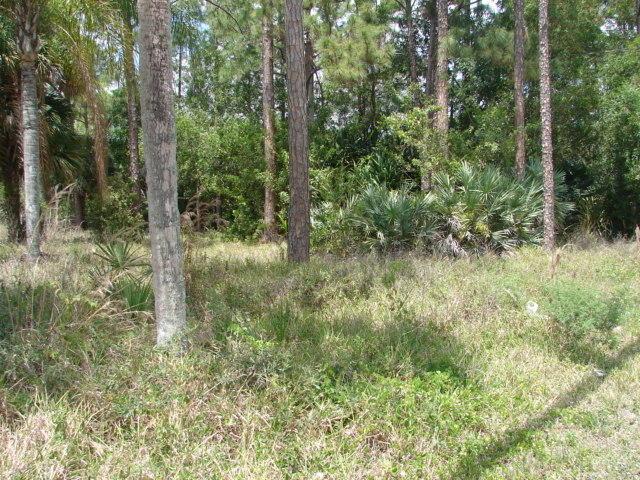 Terreno para Venda às 1207 Dayton Avenue Lehigh Acres, Florida 33972 Estados Unidos