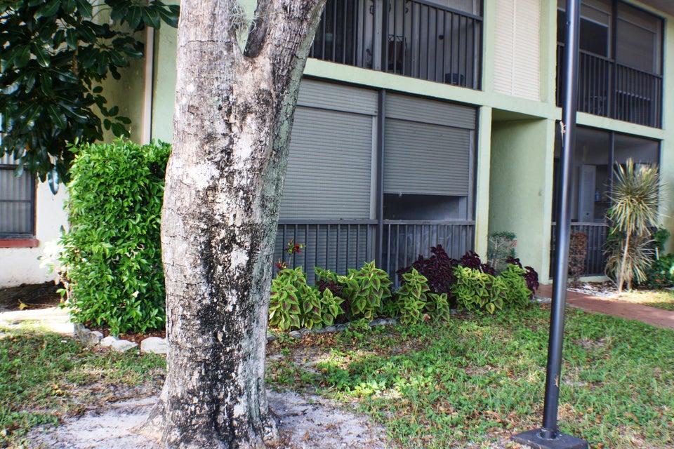 9875 Pineapple Tree Drive Boynton Beach, FL 33436 - photo 26