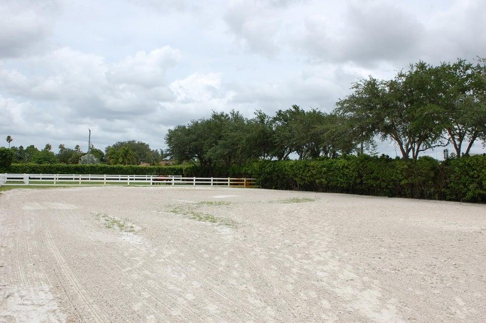 出租 为 出租 在 14372 Equestrian Way 14372 Equestrian Way 惠灵顿, 佛罗里达州 33414 美国