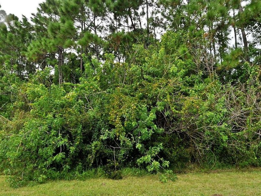 Land for Sale at 3255 SE W Snow Road 3255 SE W Snow Road Port St. Lucie, Florida 34984 United States