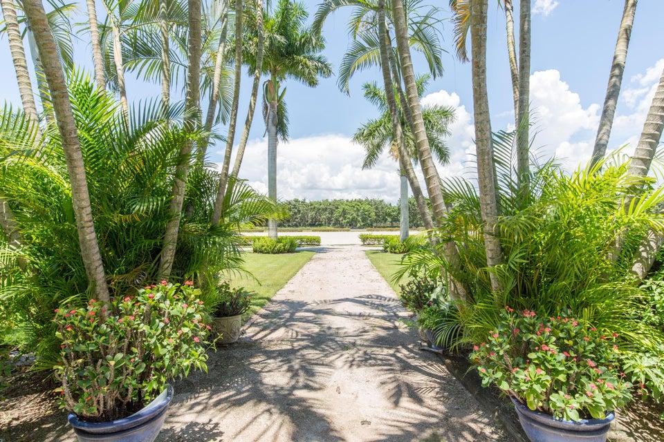 14415 Palm Beach Point Boulevard