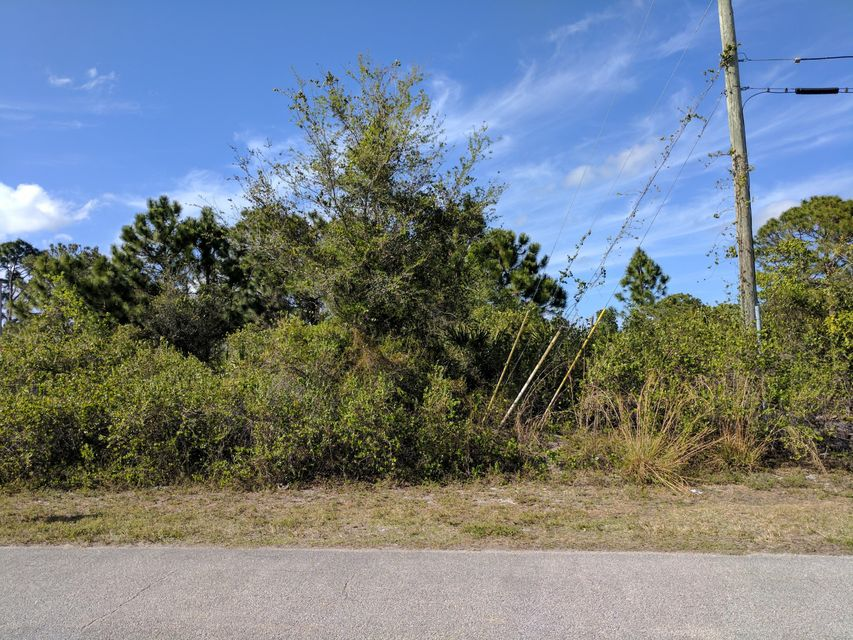Additional photo for property listing at 1867 SW Dalmatian Avenue 1867 SW Dalmatian Avenue Port St. Lucie, Florida 34953 United States