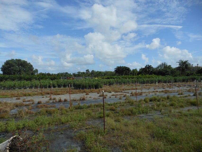 Farms In Boynton Beach Fl