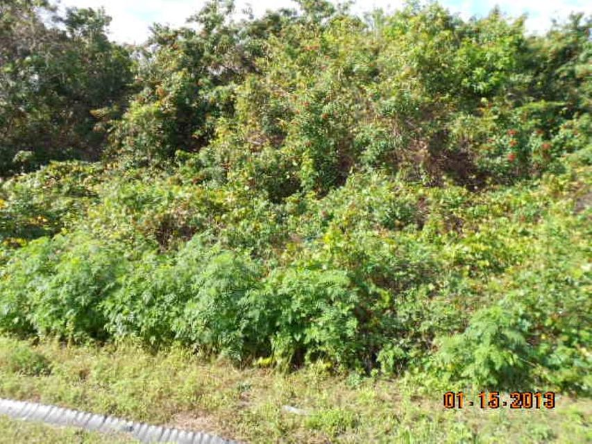 Land for Sale at 321 SW Buzby Court 321 SW Buzby Court Port St. Lucie, Florida 34953 United States