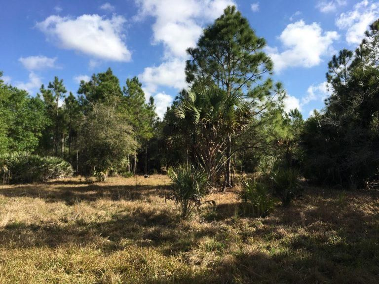 Land for Sale at 00 Old Ffa Road 00 Old Ffa Road Fort Pierce, Florida 34945 United States