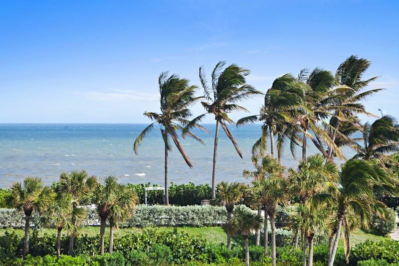 301 Ocean Bluffs Boulevard 406  Jupiter FL 33477