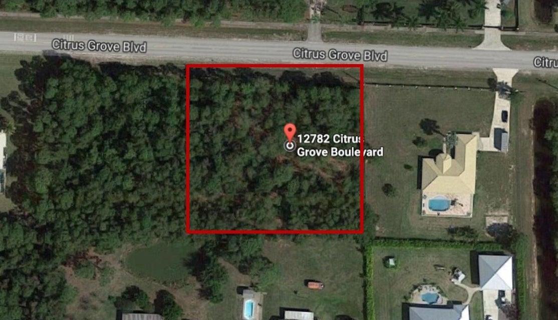 12782 Citrus Grove Boulevard West Palm Beach, FL 33412