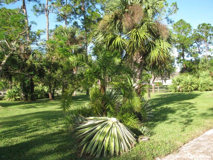 6320 Coconut Boulevard Royal Palm Beach, FL 33412 photo 26