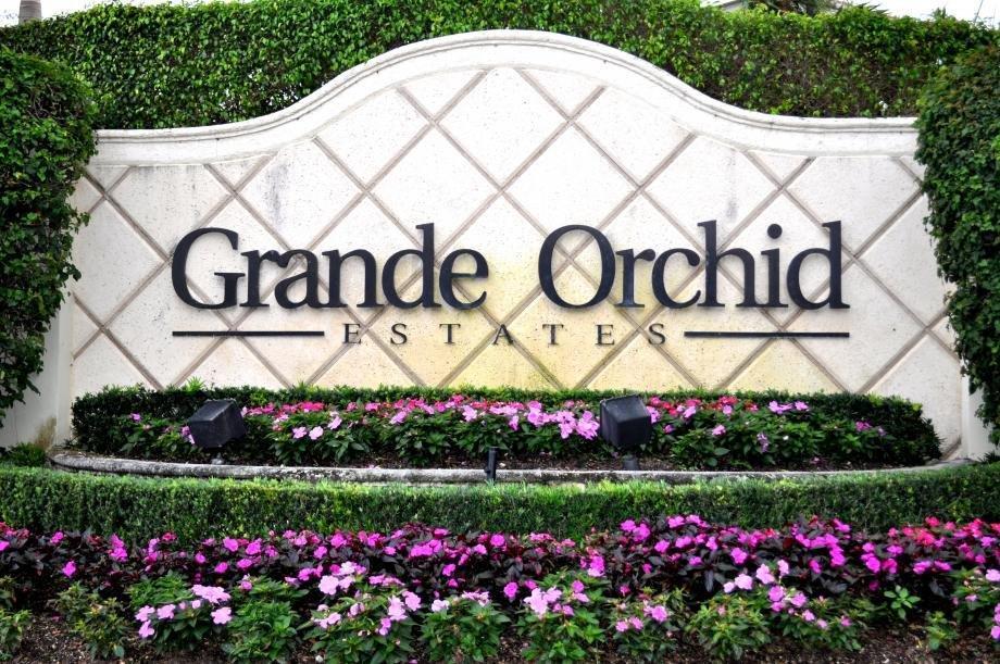 GRANDE ORCHID