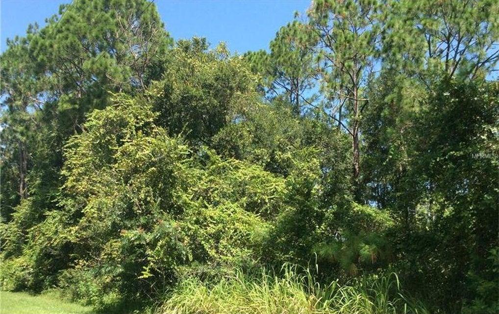 Terreno por un Venta en 111 Casey Lane 111 Casey Lane East Palatka, Florida 32131 Estados Unidos