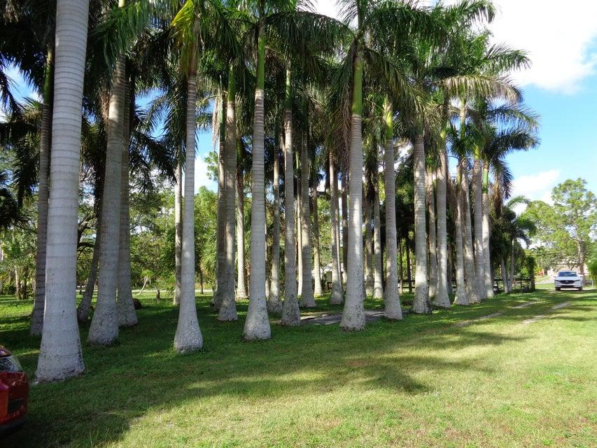 11920 52nd Road Royal Palm Beach, FL 33411 photo 14